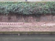 Canal des Faux Remparts Strasbourg 31527.jpg